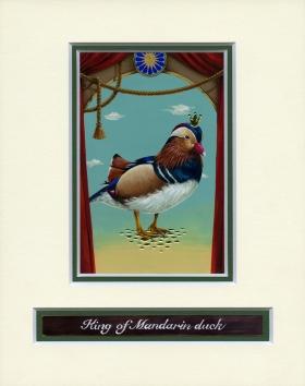 King of Mandarin duck